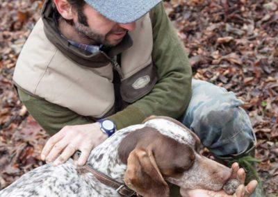 search-dog-truffle